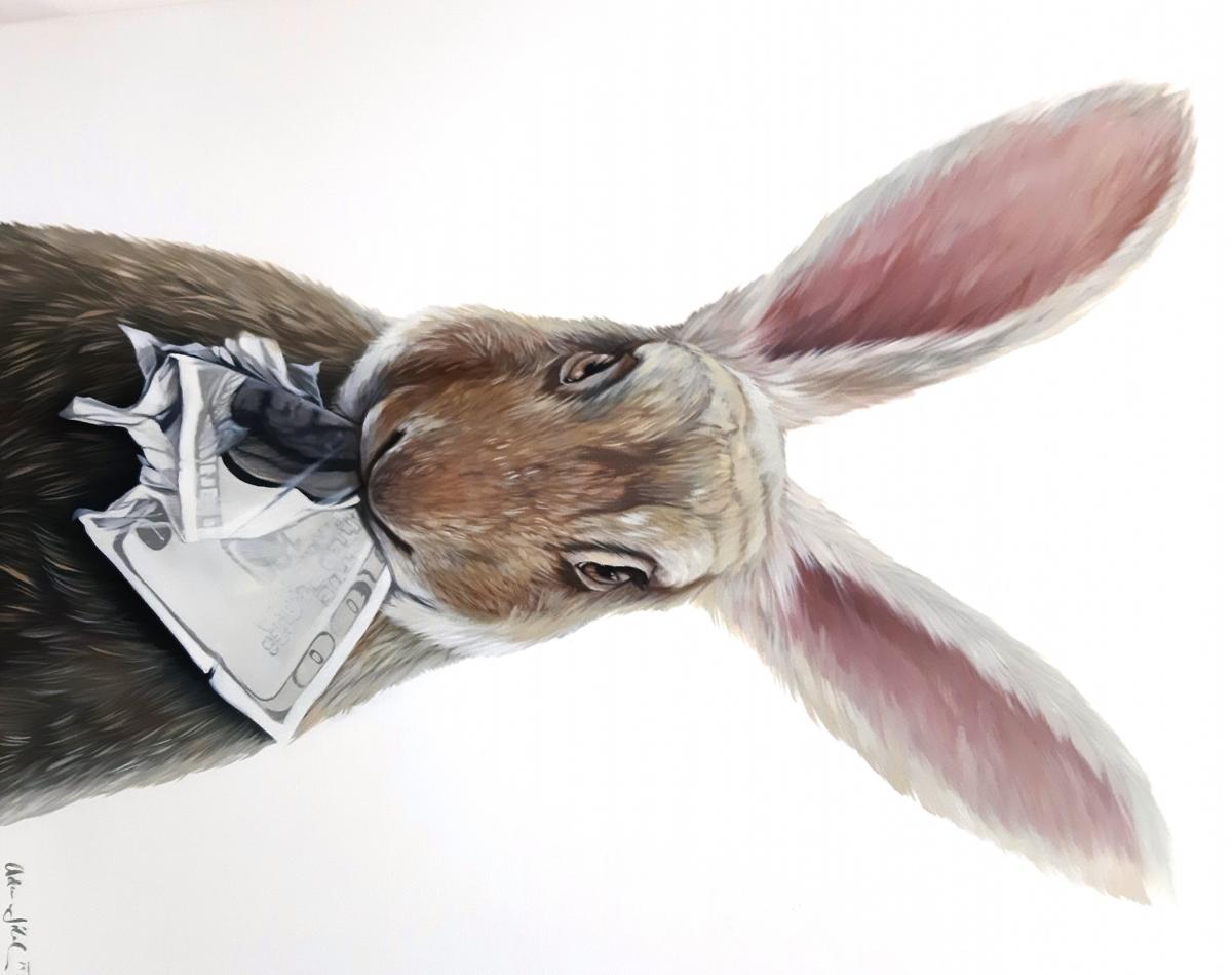 Jilek-zajíc-rozeºrané-mládí