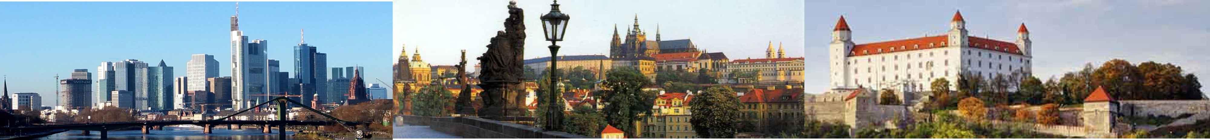 Deutsch-Tschechische-Deutsch-Slowakische Wirtschaftsvereinigung